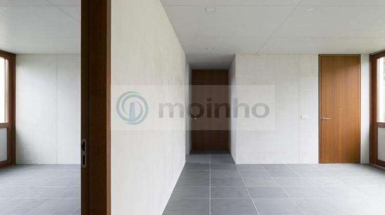 Everest Grey modern interior