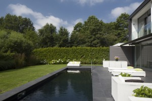 terrace and pool slate